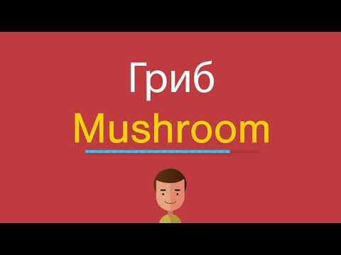 Как по английски гриб