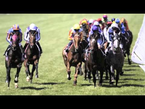 2011 Emirates Melbourne Cup