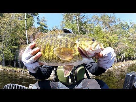 Upstate New York Spring Bass Fishing