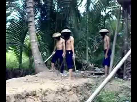 Video Hoang Phi Hong by MrDat 2010 ( Up by PhiemPro)