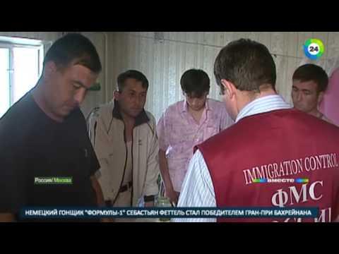 Проблемы и успехи мигрантов в России