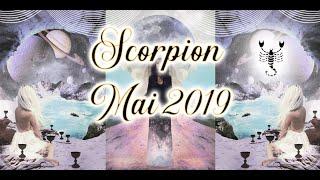 🦂 Scorpion Mai 2019 ✨