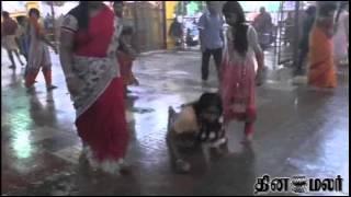 Vellore Mavattam Gudiyatham Kovil Thiruvizha News in Dinamalar Video Dated May 15th 2015