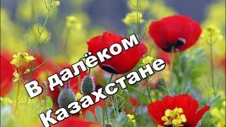 """В ДАЛЁКОМ КАЗАХСТАНЕ ""  -  Азамат Исенгазин"