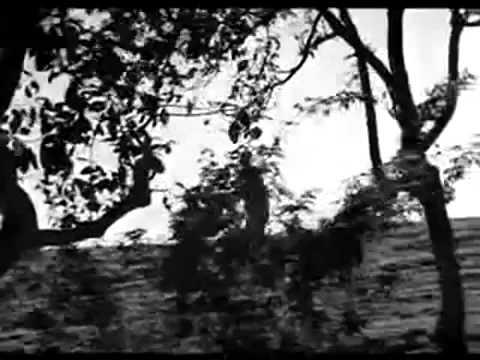 Chithira poovizhi - Idhyathil Nee