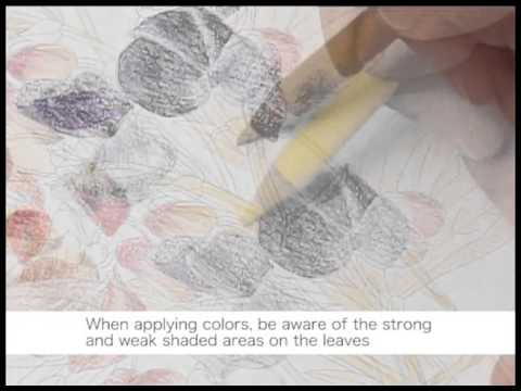 Nuri-e How to color by colored Pencils no.3/5 大人の塗り絵の塗り方