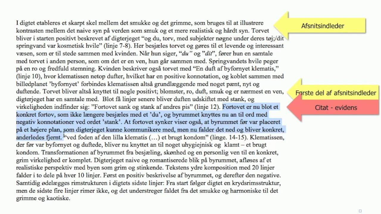 skriv en artikel dansk