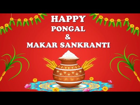 happy-pongal-&-sankranti-2020