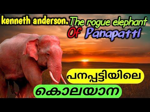 പനപ്പട്ടിയിലെ|ഒറ്റയാന്|kenneth anderson|the Rogue elephant of panapatti|real hunting Story|