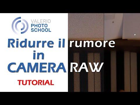 Come Eliminare Il Rumore In Camera Raw