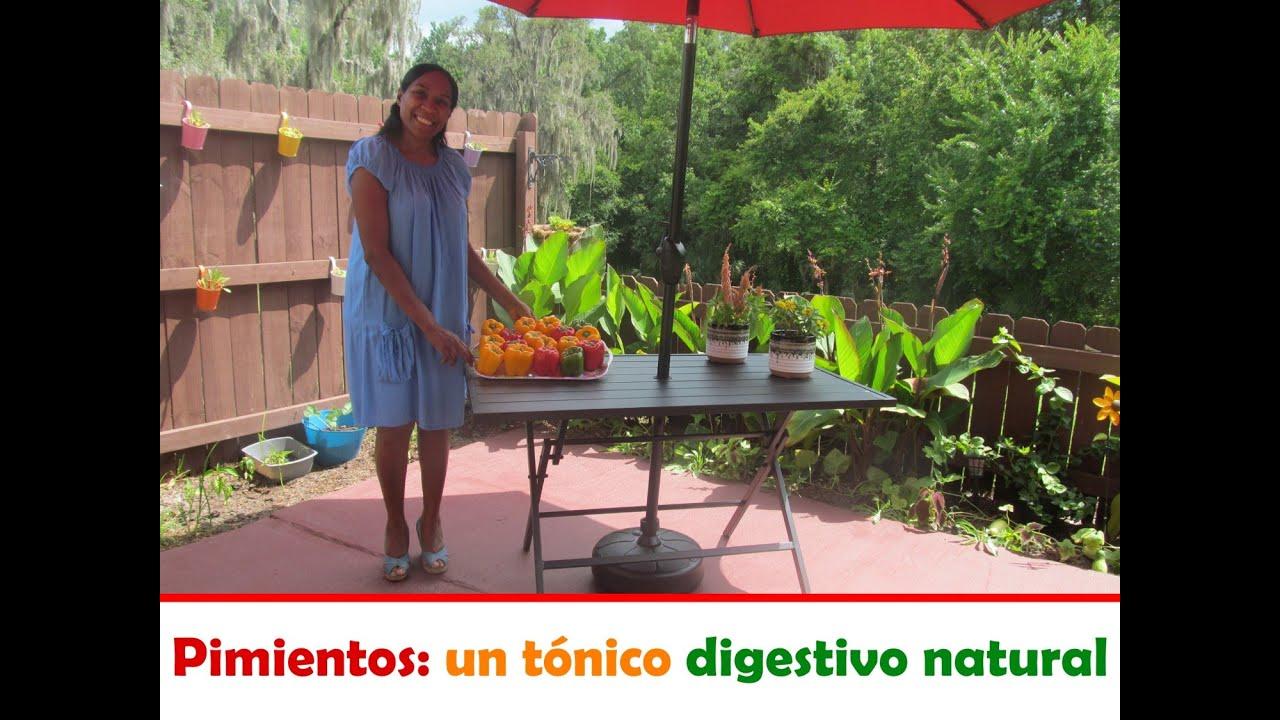 Pimientos: un tónico digestivo natural por Nely Helena Acosta Carrillo