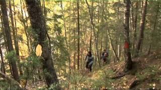 Video Movie of the Municipality of Sollefteå.wmv download MP3, 3GP, MP4, WEBM, AVI, FLV November 2018