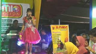 Sayua Lalidih - Pucuak Parancih ALDI MIO - Produktion live music feat Adek Kim