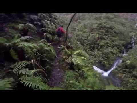 Waialeale Blue Hole Hike