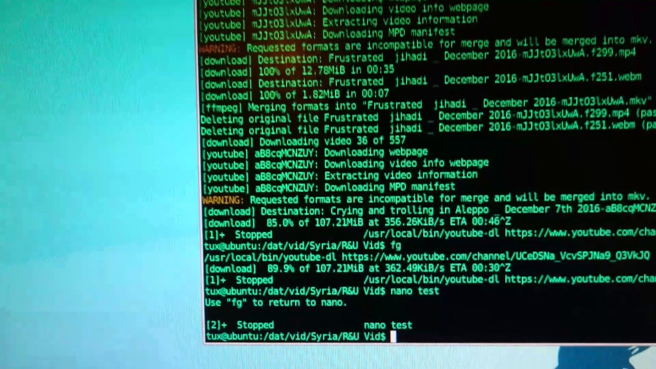 BASH Linux Job Control Pausing & Resuming Apps Processes & Downloads ...