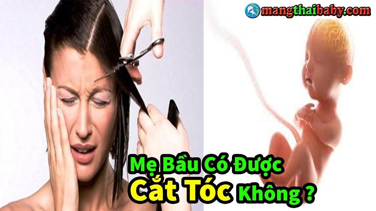 ✅ Bà Bầu Mang Thai Có Nên Cắt Tóc Không ? | Cắt Tóc Có Ảnh Hưởng Gì Đến Thai Nhi Không ?
