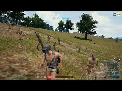 playerunknown's battlegrounds #