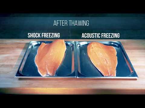 SHOCK & AEF Freezing By ABAT - FISH, SHRIMPS, SEAFOOD