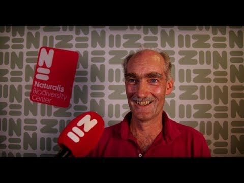 Naturalis Newsroom #2: The Rock from Space