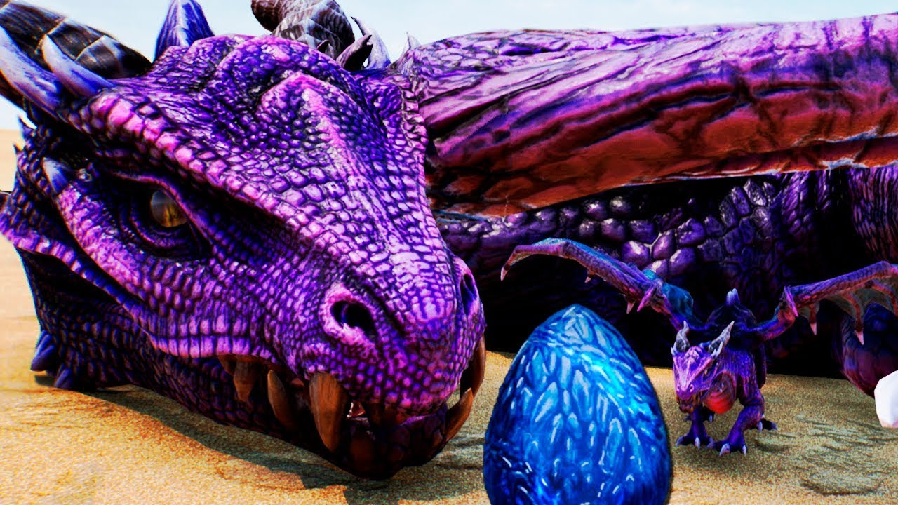 Nascimento do DRAGÃO DE FOGO + Caçando Wyverns e Protegendo Irmãos | Day of Dragons Gameplay | PT/BR - YouTube
