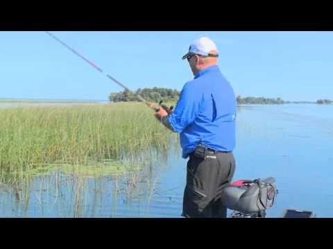 Bob Izumi Real Fishing: Bass In The Weeds