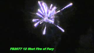 FB2077 12 Shot Fire of Fury Firehawk | Mighty Max by Red Apple Fireworks