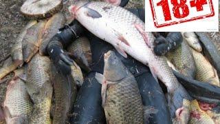 Рыбалка Ловля рыбы, Огромный улов ! Все в шоке