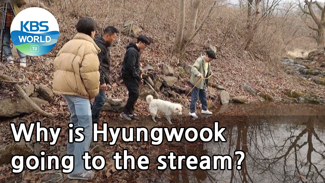 Why is Hyungwook going to the stream? (Dogs are incredible) | KBS WORLD TV 210421
