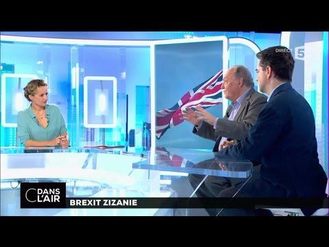 Brexit zizanie #cdanslair 30-06-2016