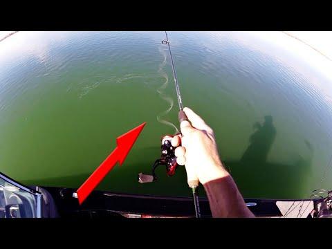 EXTRA Sensitive NANO TECHNOLOGY In FISHING RODS (IM9 Blank) - KastKing