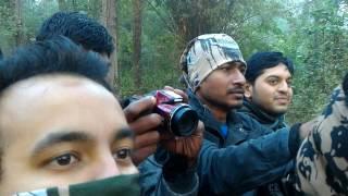 Tigress Marking - Kanha Tiger Resrve