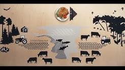 WWF:n Lihaopas - valitse vähemmän ja parempaa lihaa