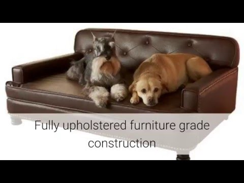Enchanted Home Pet Library Sofa Review
