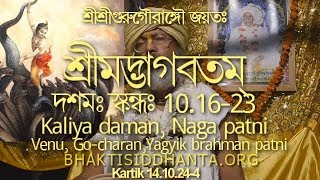 SBbn141024 ভাগবত Shrimad Bhagvatam 10.16-23 Kaliya Daman, Nag Patni, Yagyik Brahman Patni, Krishna