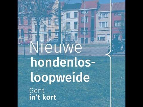Gent In T Kort Nieuwe Hondenlosloopweide Youtube