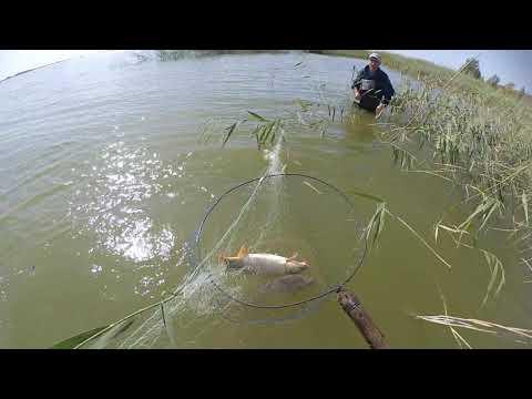 рыбалка сетями загоном
