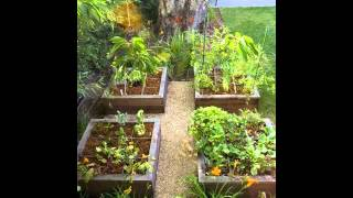 Exotic Raised Bed Vegetable Garden Designs