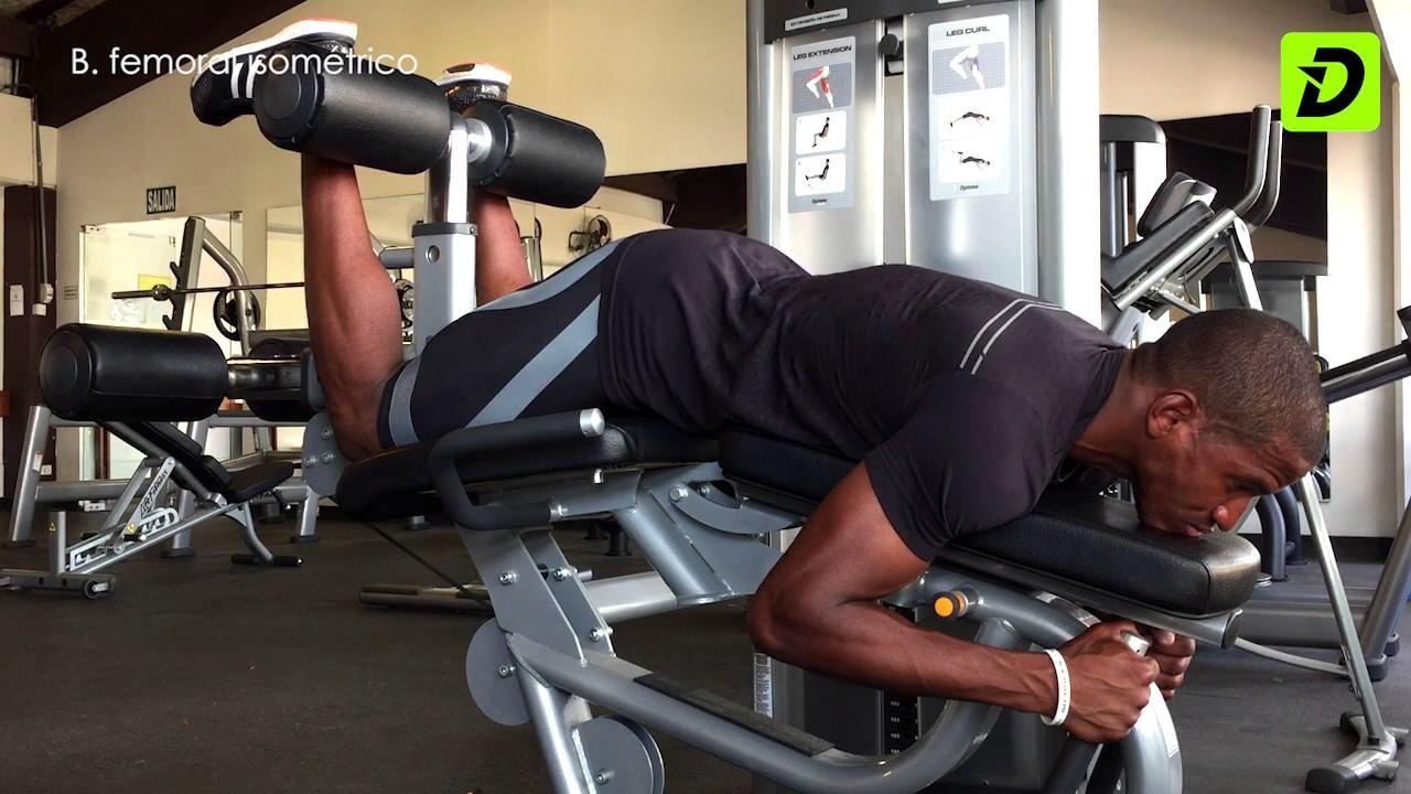 Ejercicios isometricos para biceps femoral