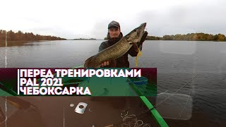 Удачная рыбалка на щуку перед открытием тренировок PAL 2021 на Чебоксарском водохранилище