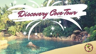 Discovery Cove Tour~Birthday Trip ~