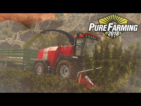 I Got Hired By The Cartel! | Saving Hemp And Coffee From A Jungle Fire | Pure Farming 2018 Columbia