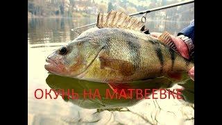 рыбалка на окуня и судака  матвеевке Обь