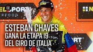 Esteban Chaves, orgullo colombiano: ganó la etapa 19 del Giro de Italia | Noticias|El Espectador
