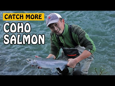 HOW TO CATCH MORE VEDDER RIVER COHO SALMON | Fishing With Rod