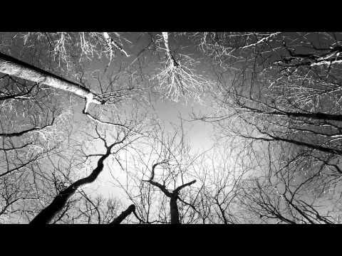 Spooky Black - Without U (Prod. Greaf)