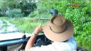 Botswana Safaris Vacations, Luxury Tours, Safari Camp