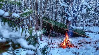 Winter Bushcraft Overnighter - N๐ Tent - Natural Shelter, Solo WINTER CAMPING, SURVIVAL SHELTER