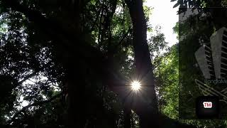 Five feet apart X Jashn e bhara (Raghav Chaitnya Cover)।।  Cinematic Video।। Bangla Metić ।।