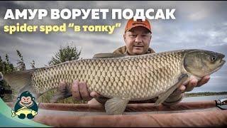 Амур ворует подсак Тест ракеты Spider Spod Ловля карпа на озере Кричевичи
