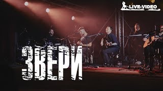 Группа Звери Иваново 2017 концерт клип